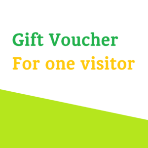 Gift Voucher For One Visitor