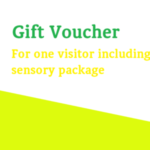Gift Voucher For One Visitor Including A Sensory Room Session
