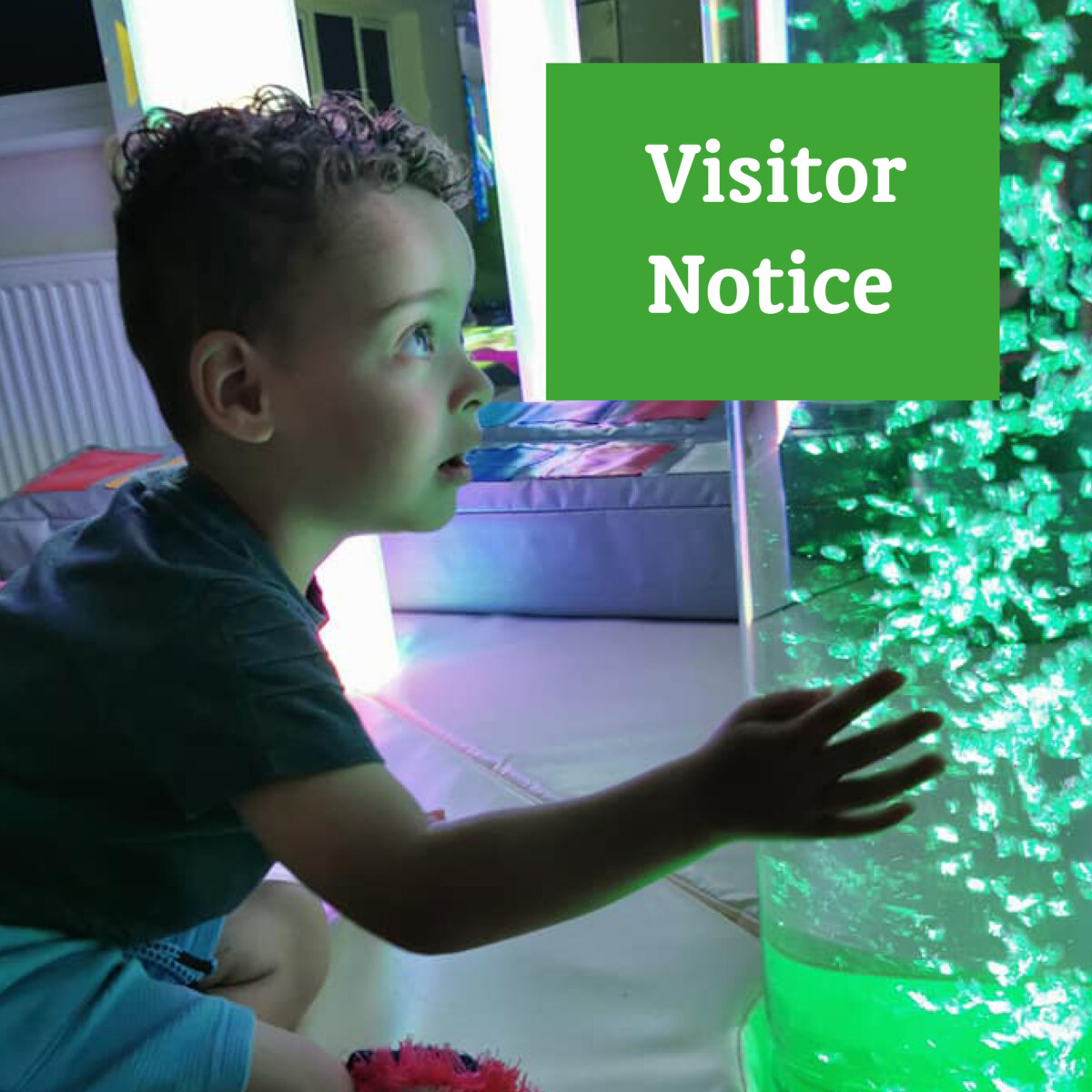 Visitor Site Information For December…